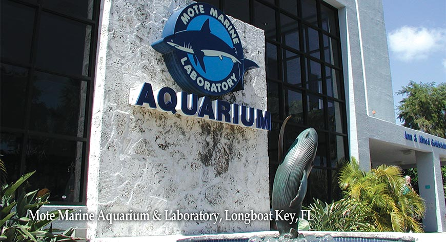 Front of building at Mote Marine Aquarium Longboat Key